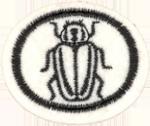 Requisitos de la especialidad de Insectos