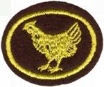 Requisitos de la especialidad de Avicultura