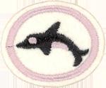 Marine Mammals Honor Worksheet