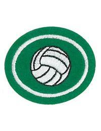 Requisitos de la especialidad de Voleibol