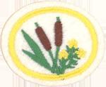Edible Wild Plants Honor Requirements