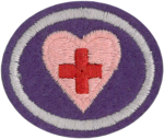 First Aid Standard Honor Requirements