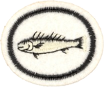 Fishes Honor Requirements