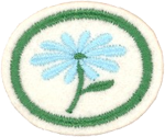 Flowers Honor Requirements