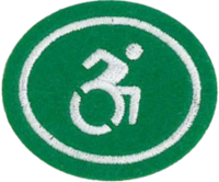 Adaptive Sports Honor Requirements