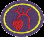 Hoja de trabajo de la especialidad de Corazón y circulación