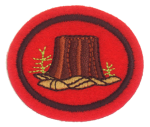 Forestry Honor Requirements