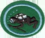 Requisitos de la especialidad de Buceo con escafandra