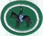 Horsemanship Honor Requirements