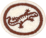 Requisitos de la especialidad de Reptiles