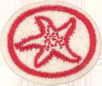 Marine Invertebrates Honor Requirements