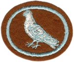 Pigeon Raising Honor Requirements