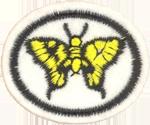 Requisitos de la especialidad de Mariposas