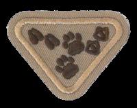 Animal Footprints Award Requirements