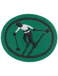 Skiing Downhill Honor Requirements
