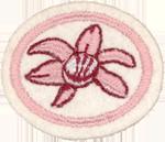 Requisitos de la especialidad Orquídeas
