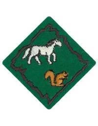 Requisitos de la especialidad de Animales - Eager Beaver