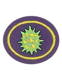 Viruses Honor Worksheet