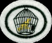 Requisitos de la especialidad de Pájaros y aves