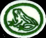 Amphibians Honor Requirements