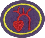 Heart and Circulation Honor Requirements