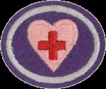 First Aid Standard Honor Worksheet