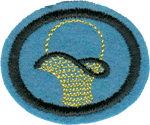 Basketry Honor Requirements